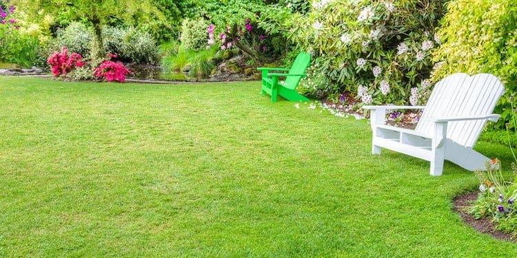 gazon pelouse maison
